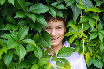 Cheerful happy boy peeking out from behind the leaves of trees
