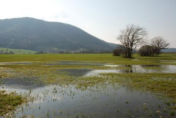 Slovenian Wetlands