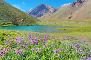 Horcones lake at the Aconcagua valley