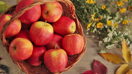 Season of the harvest - HD video clip of ripe apples