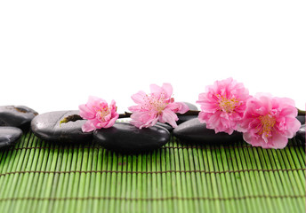 Camellia on black stone on bamboo green mat