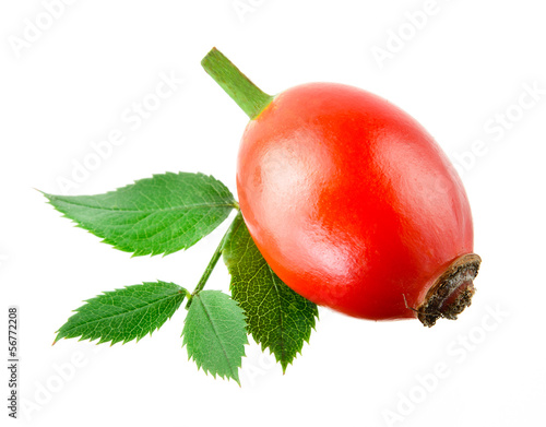 Rose hip with leaf isolated on a white background.
