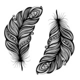 Peerless Decorative Feather (Vector). Tattoo