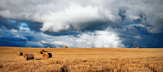 panorama of a harvested crop field with summer storm clouds