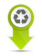 Schild Pin Recycling