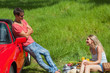 Smiling couple having picnic together