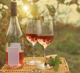 Two glasses and bottle of the rose wine in autumn vineyard. - 56783468