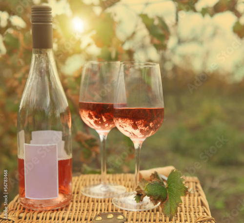 Two glasses and bottle of the rose wine in autumn vineyard.