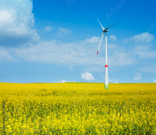 Wind power electricity turbine