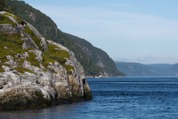 saguenay fjord near tadoussac
