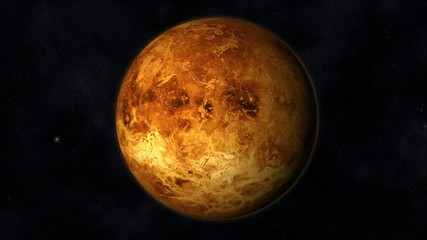 Venus Animation