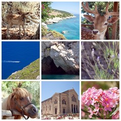 Zakynthos Island Collage, Greece,Zante, Zakintos, Zakynthos