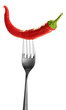Red hot chili pepper  on fork, isolated on  white