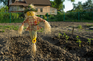 funny scarecrow