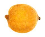 Rotting lemon on a white background