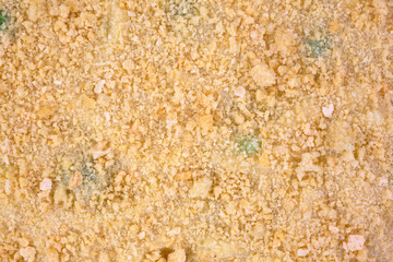 A very close view of breadcrumbs atop frozen TV dinner