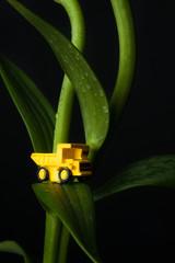 トラックと植物