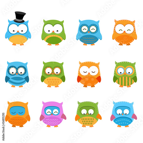Retro Owl Set
