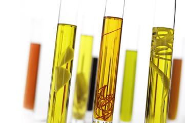 aromatisierte Öle, Zitronenöl, Knoblauchöl, Chiliöl, Olivenöl