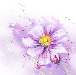 Japanese Anemones flower. Watercolor.