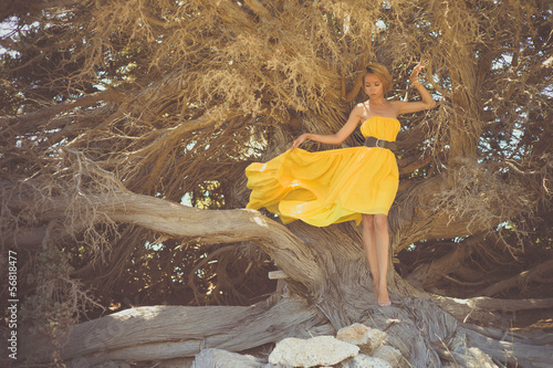Beautiful lady with mighty tree