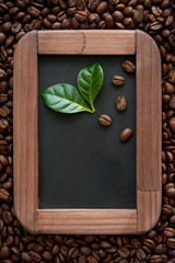 Coffee beans with green leaves on a chalkboard