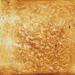 texture of toasted hot white bread