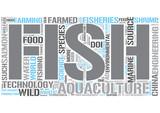 Aquaculture Word Cloud Concept poster