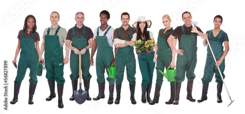 Group Of Gardener Workers