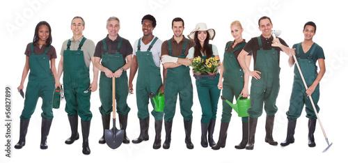 Group Of Gardener Workers