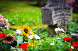 Fresh flowers on grave. Selective focus on sunflower