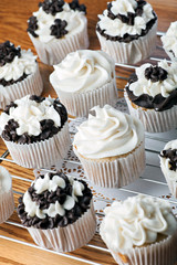 Iced Gourmet Cup Cakes