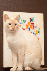 gato e obra de arte