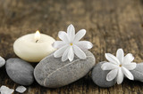 grey stones and spring flower, candle on old wood