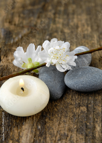 grey stones and spring flower ,candle on old wood