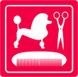 pink grooming icon with poodle dog, scissors and comb silhouette