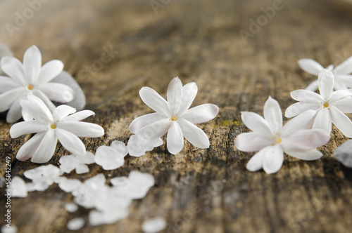 white flower and pile of white salt on a grunge wood