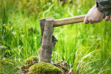 Lumberjack in forest with an ax