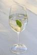 cocktail Hugo