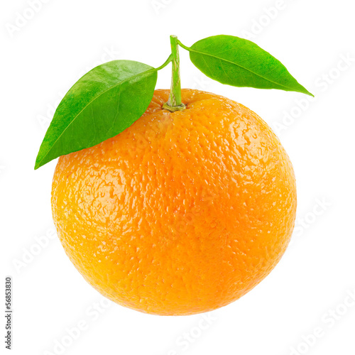 Orange isolated  white