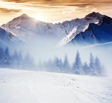 D hiver