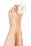 beautiful female feet
