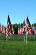 Flags 58