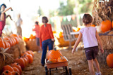 Little Girls Pulling Their Pumpkins In A Wagon