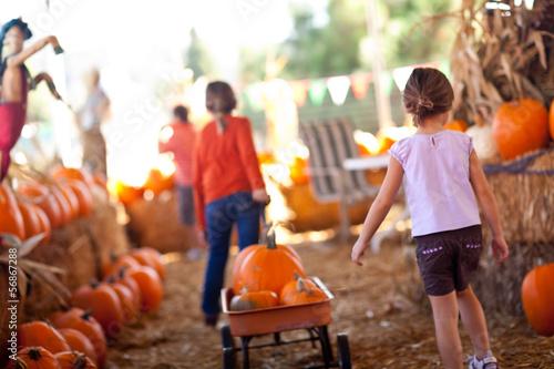 Leinwanddruck Bild Little Girls Pulling Their Pumpkins In A Wagon