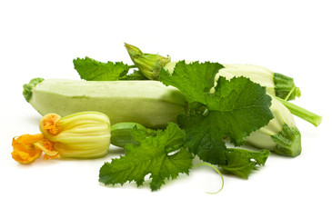 Flowers, leaves and vegetable marrow fruits isolated on a white