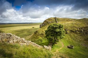 Sycamore Gap, Hadrians Wall