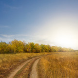 autumn steppe road