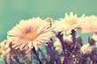 adorable vintage flowers