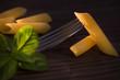 Pennette, italian raw pasta